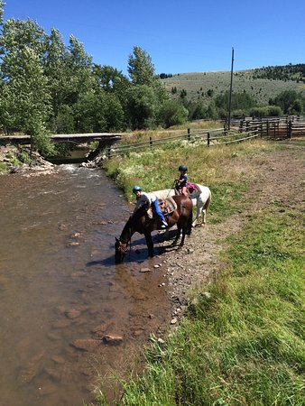Clyde Park, MT: thirsty horses after a long ride
