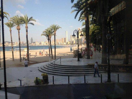 Playa de Poniente vista desde arriba: fotografía de Playa de Poniente, Benido...