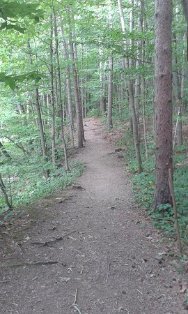 Lowville, NY: clearly marked trails, but there is a steep Drop-Off, careful!