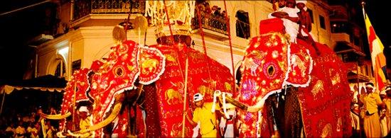 Queen's Hotel: World famous Sri dalada Perahara