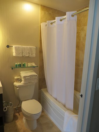 One King West Hotel & Residence: Small but adequate bathroom