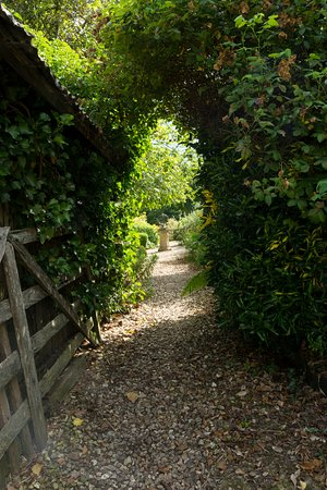 Dalwood, UK: Gardens