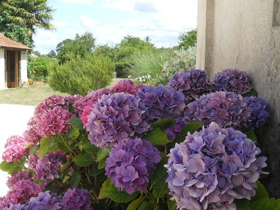 Le Tatre, Frankreich: Garden View