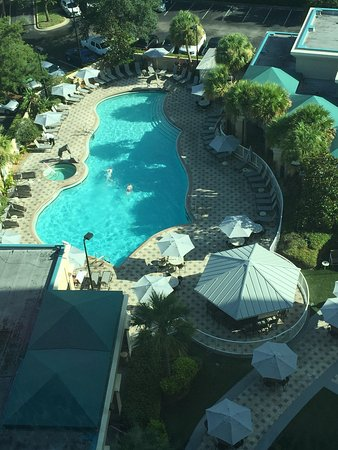 Crowne Plaza Orlando Universal: View of the beautiful pool area taken from our room on the 12th floor. And a shot taken poolside