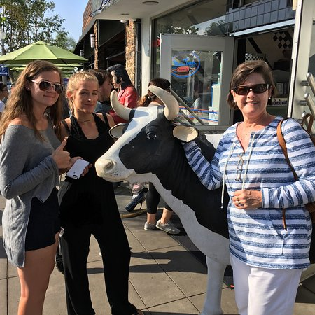 Moo Time Creamery: Better than The Cow in Reisterstown