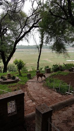 Dont Expect More From This Beautiful Farm !!!!