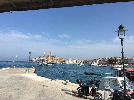 Island Hotel Istra: delfin pier