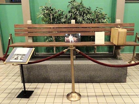 forrest gump bench - 550×413