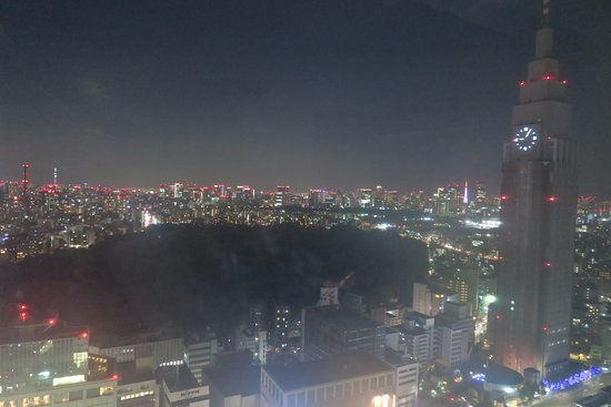 Hotel Century Southern Tower: Night view from room of Shinjuku Gyoen - Eastern veiw