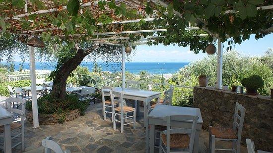 Panorama Hideaway: Restaurant sous la pergola
