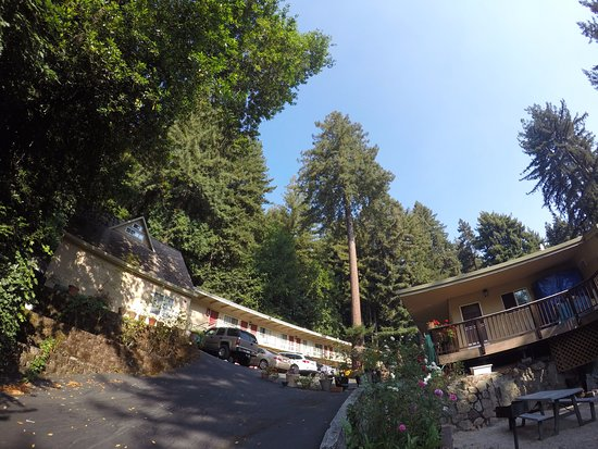 Quality Inn & Suites Santa Cruz Mountains Photo