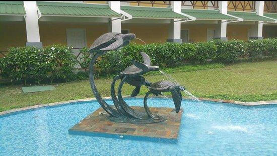 Playa Tortuga Hotel & Beach Resort: Screenshot_2016-08-01-17-24-10-1_large.jpg