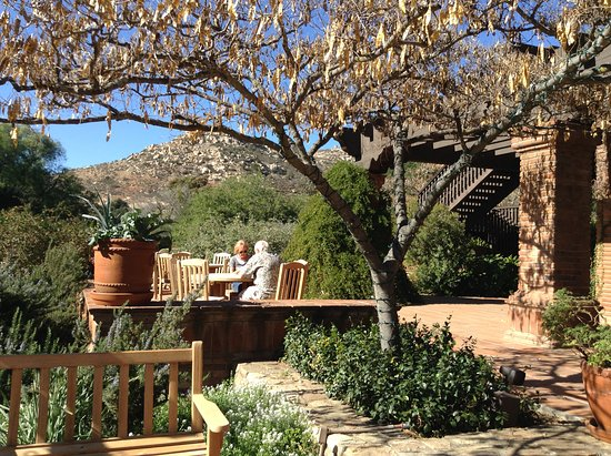 Rancho La Puerta Spa: Sitting outside the dining room for lunch in beauty!