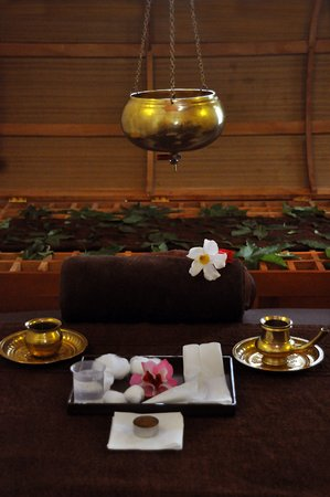 ExSerendib Ayurveda Cure & Therapy