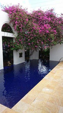 Hotel Casa Harb : photo8.jpg
