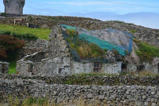 Galway Tour Company Aran Islands Ireland