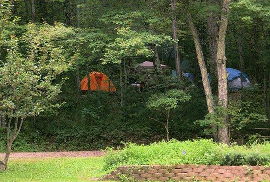 Montebello Camping and Fishing Resort: Tent Sites