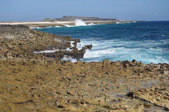 Washington-Slagbaai National Park, Bonaire: Op lavavelden langs de zee banjeren.