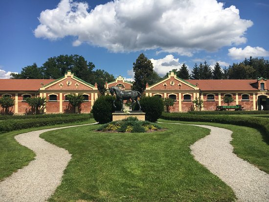 Provincial Stud Farm
