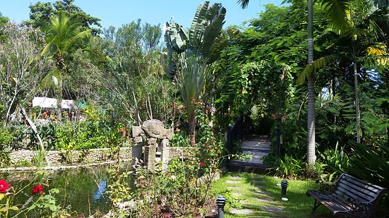 Hotel Diuwak: Pond / Bridge on my way to breakfast.
