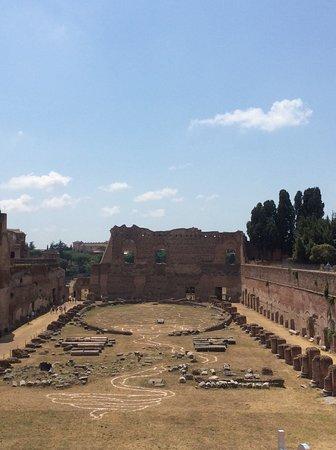 Forum Romain (Foro Romano) : Palais de Flavian et ses jardins