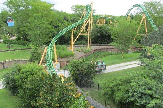 Atrao nova Cobras curse Picture of Busch Gardens Tampa