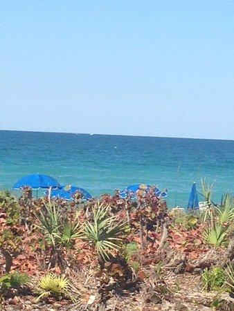 Foto de Hutchinson Island Marriott Beach Resort & Marina