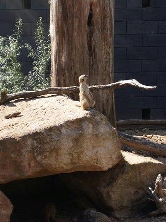 Tierpark Alsdorf