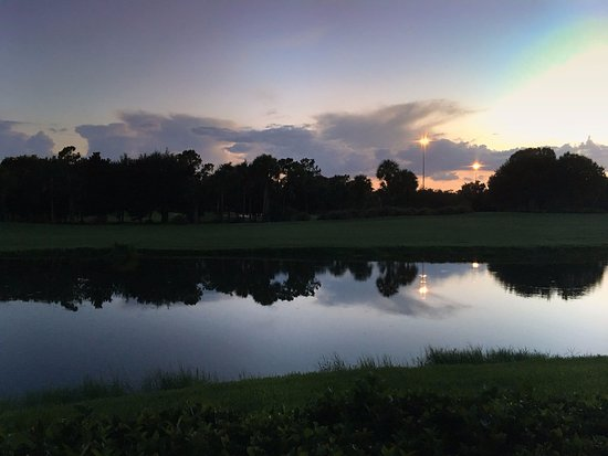 Marriott's Sabal Palms: View from screen in porch toward golf course