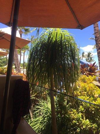 Ko Restaurant: photo1.jpg