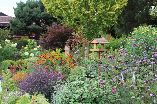Beautiful display gardens to inspire our customers - Picture of ...