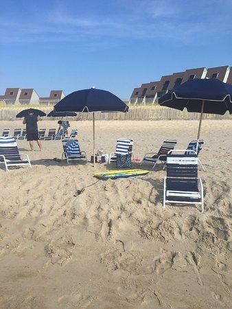 Surf Club Resort: photo0.jpg
