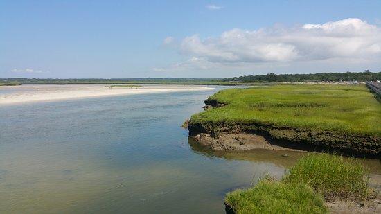 Gray's Beach: beachlands