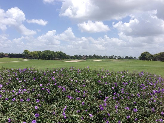 Mustang Course - Lely Resort: Holes 17 & 18 on Mustang Course