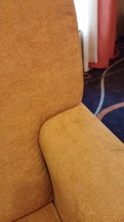 Comfort Suites Beaufort: More stained and disgusting furniture
