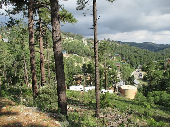 Mt. Lemmon Scenic Byway : Mt. Lemmon Road Trip