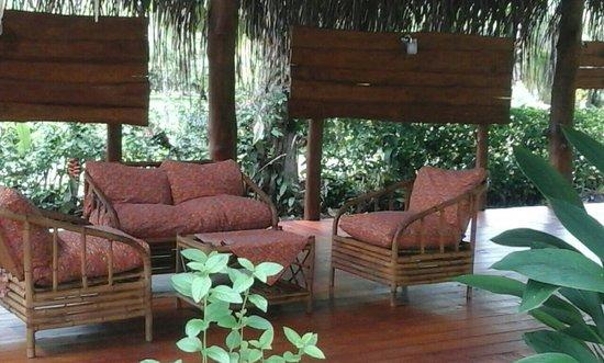 Playa Matapalo, كوستاريكا: Guava Lodge