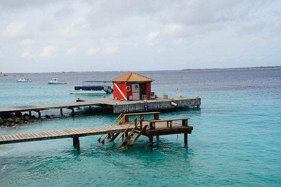 Captain Don's Habitat: Dive slip