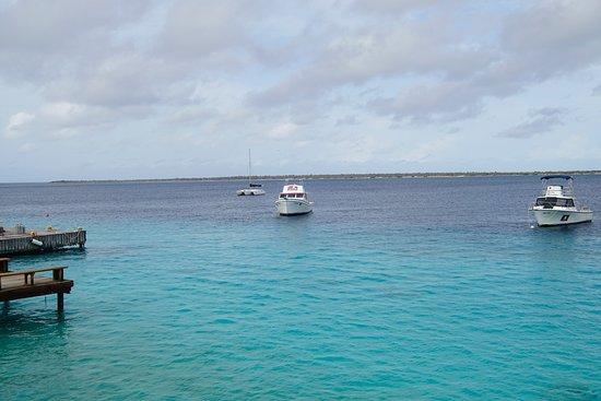 Captain Don's Habitat: Boats