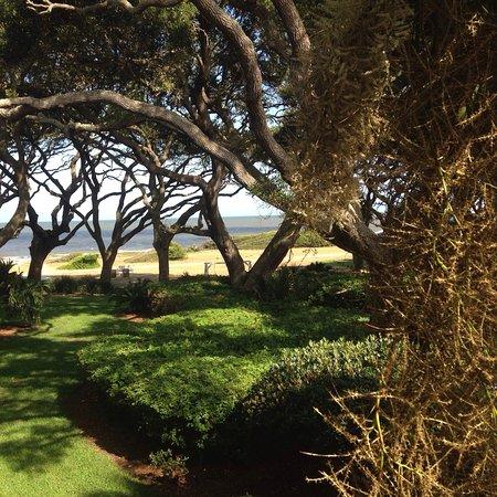 The Beachview Club: photo0.jpg