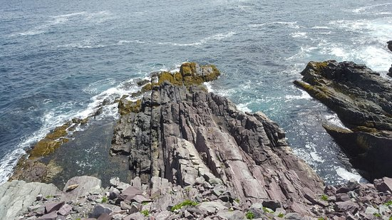 Lighthouse Picnics