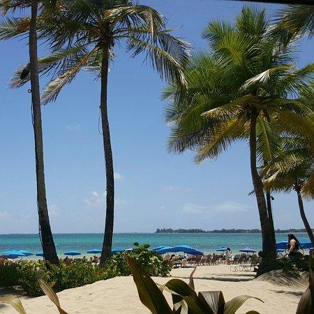 The Ritz-Carlton, San Juan: IMG_20160724_124707_large.jpg