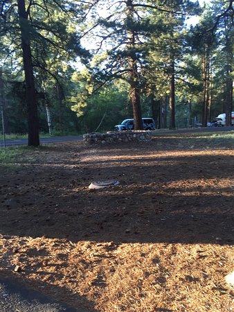 North Rim Campground: photo3.jpg