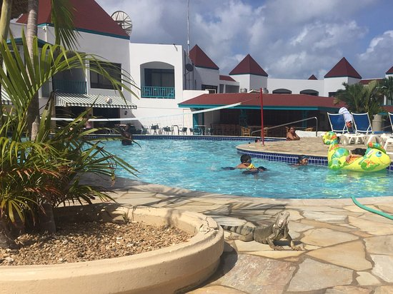 The Mill Resort & Suites Aruba: photo0.jpg