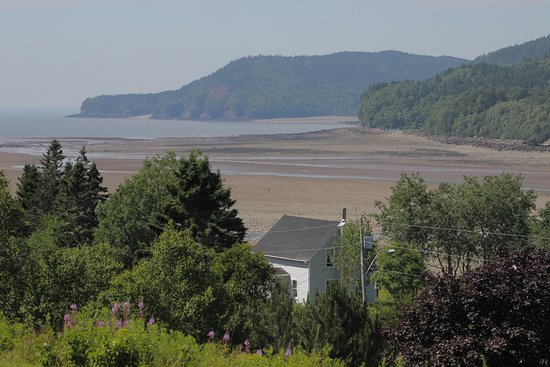 Vista Ridge Cottages: View from our cottage at low tide - the entire area of sand seen fills with water at high tide