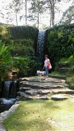 Florien, LA: Hodges Gardens is home to 1 of 4 known water falls in Louisiana