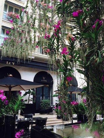 Four Seasons Hotel George V Paris: Orchids in atrium