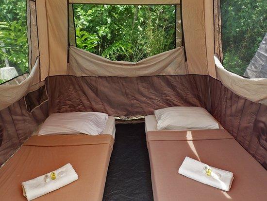 Nurture Wellness Village Inside our tent during our gl&ing & Inside our tent during our glamping - Picture of Nurture Wellness ...