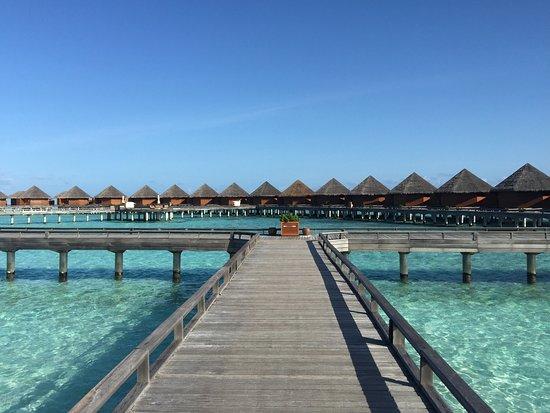 باروس جزر المالديف: photo1.jpg