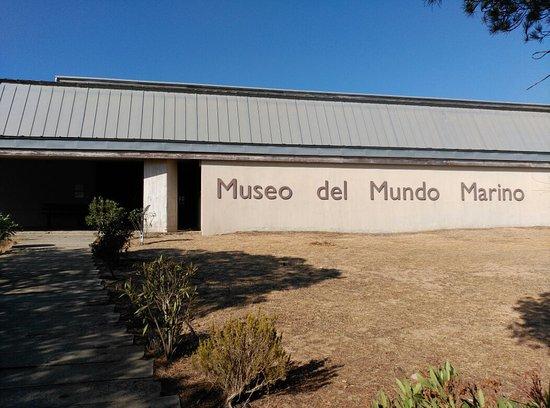 Museo Mundo Marino Matalascanas